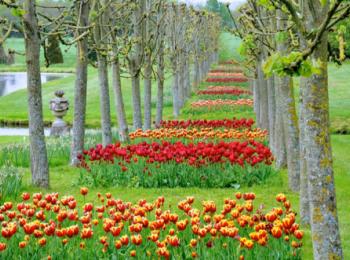 Живописные сады Нормандии